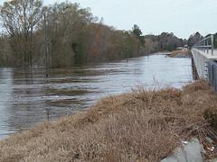 27 Feb 2013 Withlacoochee River @ GA 122