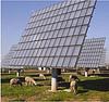 Figure 6: Solar Sheep (Concentrix Solar PV concentrator plant)
