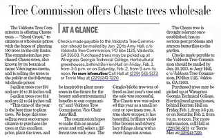 Tree Commission offers Chaste trees wholesale